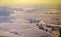 紅茶全盛期に山本周作がパリクエラ・アスーに造成した100アルケールの大茶園。山本の命を受けて、新潟県立可茂農林高卒の松尾仁が28年がかりで造成したという(写真提供=松尾仁、1986年撮影)