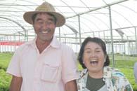 水耕栽培を行う下田さん親子