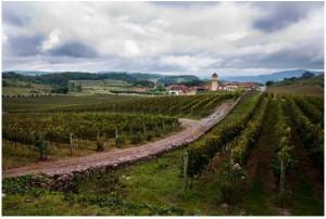 ガウーショ山脈(Serra Gaucha)の中の村の様子(Foto Eduardo Seidl/Palacio Piratini)