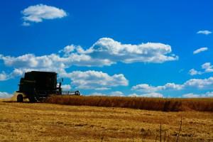 大豆の収穫風景(パラナ州、Foto: Antonio Costa/Agencia Parana)