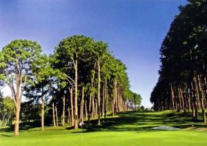 難関の11番ホール(arujá golf clube 50 anos de história)