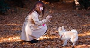 犬の散歩の様子(写真素材ぱくたそ、モデルLala)(https://www.pakutaso.com)