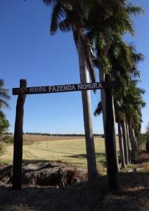 現在の野村農場の入り口の様子