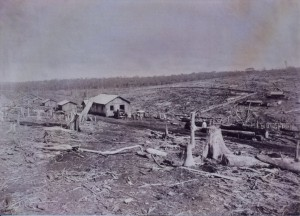造成中の後宮農場