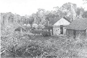 人々は開拓に燃えていたが、酸性土壌とマラリア発生地帯のために総退却した