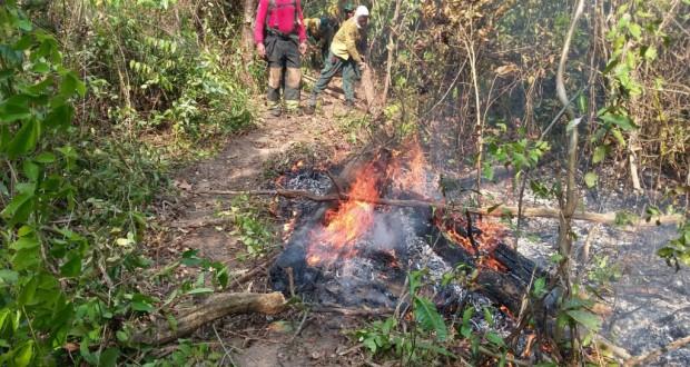 先住民居住区で消火活動に当たる消防士達(Corpo de Bombeiros - 09/10/2015)