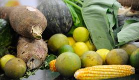 10月は約半数の都市で、ブラジル人家庭に欠かせない基礎的食品が値下がりした。(参考画像・Arquivo/Agência Brasil)