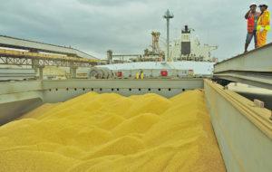 出荷されるブラジル産大豆(参考画像・Ivan Bueno/APPA)