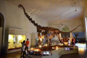 館内の恐竜の標本(Tomaz Silva/Agência Brasil)