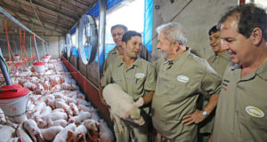 ブラジルは牧畜大国でもある(参考画像・Ricardo Stuckert/Instituto Lula)