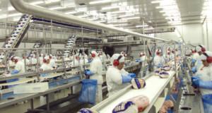 パラナ州鶏肉加工場(参考画像・ANPr/SINDIAVIPAR)
