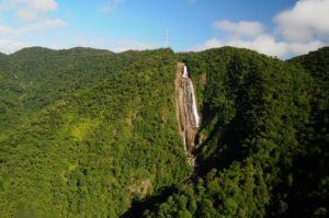 世界的にも貴重な生態系も含まれるマタ・アトランチカ(Adriana Mattoso/SMA)