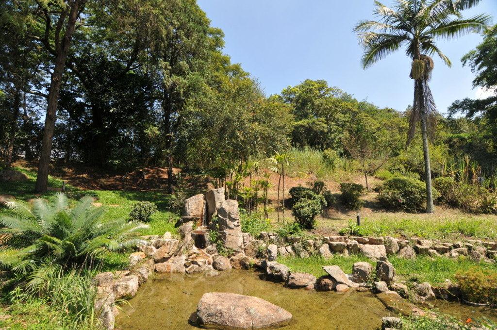 蘇った日本庭園の景観(撮影・望月二郎)