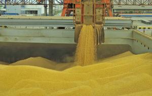 パラナグア港での大豆の積み込み(参考映像、Ivan Bueno/APPA)