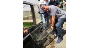 17キロぐらいの成魚を見せる江尻さん(右)