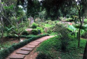 最後の事業となった日本庭園修復