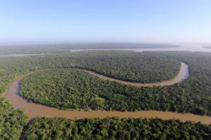 NGOとの契約停止で修復不能な損失が生じる可能性が懸念される法定アマゾンの熱帯林(SIDNEY OLIVEIRA/AG. PARÁ DATA: 18.10.2017)