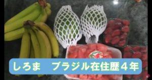 城間さん(ユーチューブ上ではしろまで活動)のアボカド食べ方紹介動画