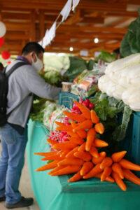 新鮮な野菜が安く販売され、たくさん買っていく人も