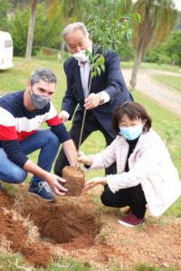 左から植樹するグト市長、石川文協会長、小室首席領事