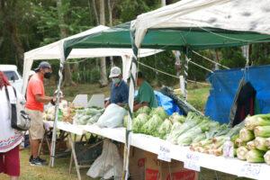 パビリオンとは別に茶室前でもコチア青年の野菜販売が行われた